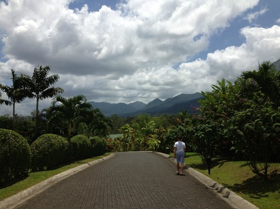 Arenal Manoa Hotel : Beautiful views from everywhere!!