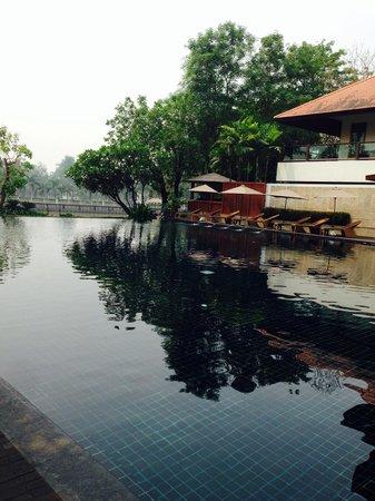 Ratilanna Riverside Spa Resort Chiang Mai: สระว่ายน้ำ
