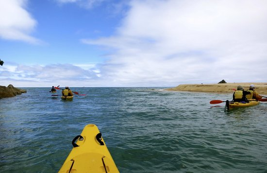 Abel Tasman Ocean View Chalets: sea kayaking