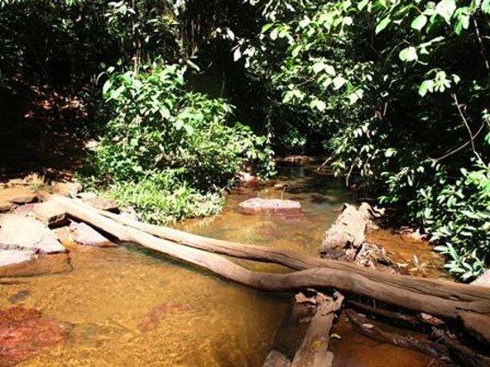 Evilson Waterfall: Cachoeira do Evilson