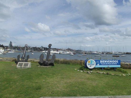 Hafen von Punta del Este: Porto de Punta del Este