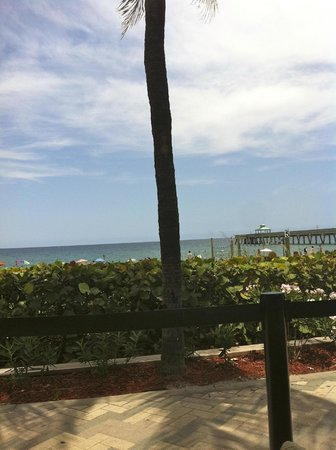 JB's On The Beach: View