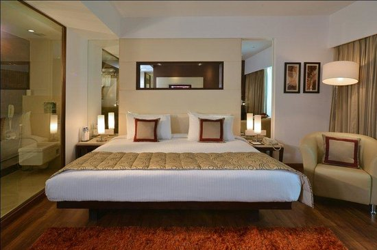 Majestic Court Sarovar Portico: Deluxe Room