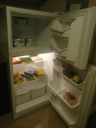 Albert at Bay Suite Hotel: Fridge - I don't know to cook, so brought some ready to eat dishes