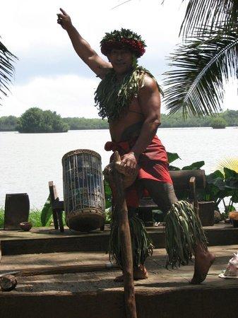 Tropical Farms Macadamia Nut Farm and Farm Tour: Tama posing for the cameras