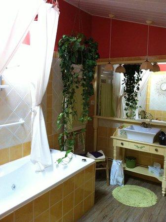 Au 10 d'Aygu - Chambres d'hôtes en ville : Salle de bain