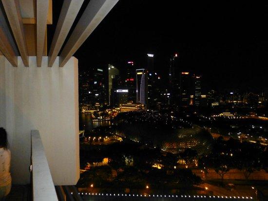 Marina Mandarin Singapore : ベランダからの夜景