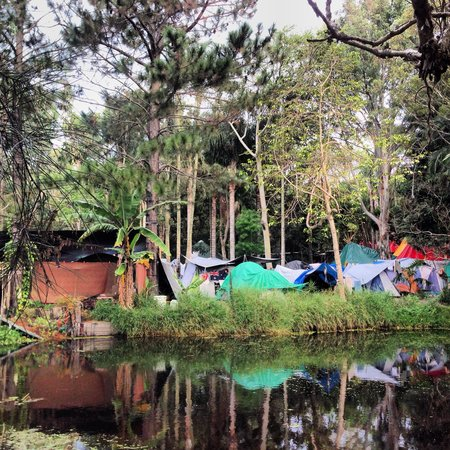 The Arts Factory Backpackers Lodge: Behind the pentagon teepee, where the happy campers are.