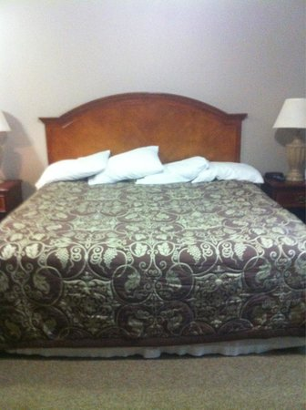 Country Hearth Inn Gulf Shores: Cute could have been made Neater but was clean!