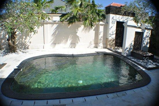 The Tukad Villa: Pool