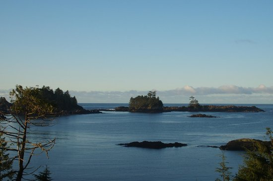 Bostrom's Bed and Breakfast: View from the deck