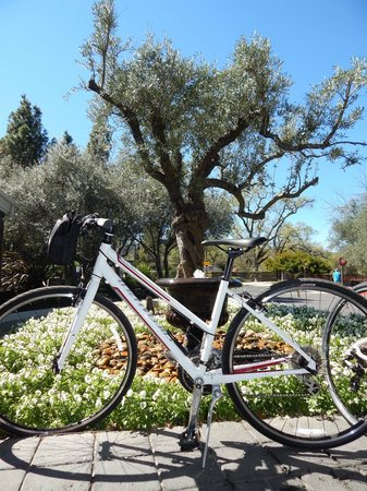 Hotel Yountville: Our favorite past-time