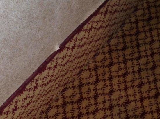 The Roosevelt Hotel: Peeling wallpaper.