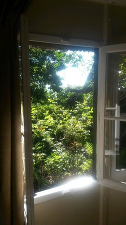Pleasant Places Guesthouse: View from cottage
