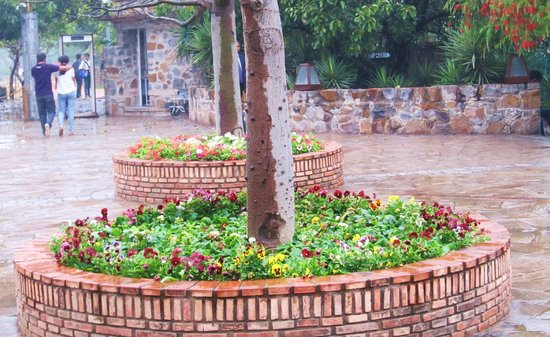 Beautiful Garden of Five senses on a rainy day !!!
