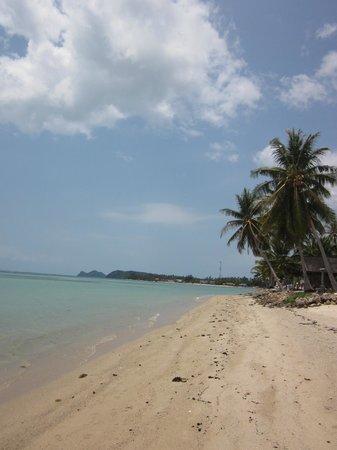 Awe Resort : Along the beach shore