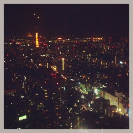 The Ritz-Carlton, Tokyo : View from 5307