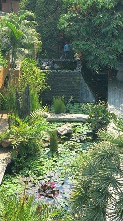 VC@Suanpaak Hotel & Serviced Apartment : Hotelgelände