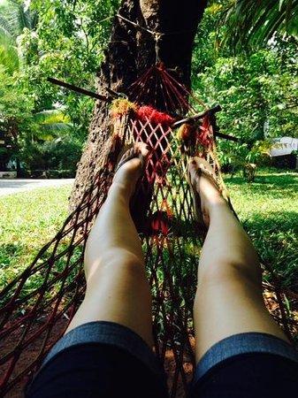 Tharavad Heritage Resort: hammock
