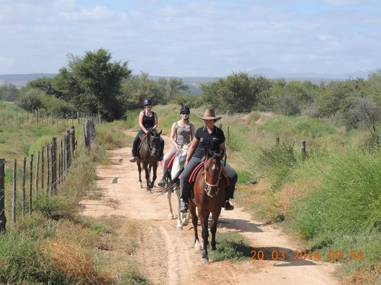 Kango Horse Riding (Oudtshoorn) - 2019 All You Need to Know Before