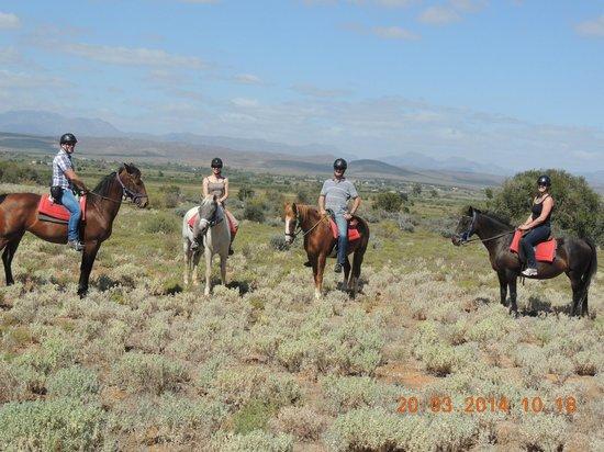 Kango Horse Riding: 20