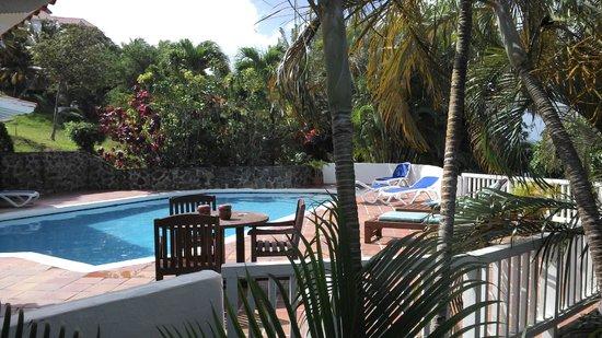Windjammer Landing Villa Beach Resort: Villa 401 pool area