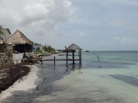 Desire Resort & Spa Riviera Maya : The neighbors