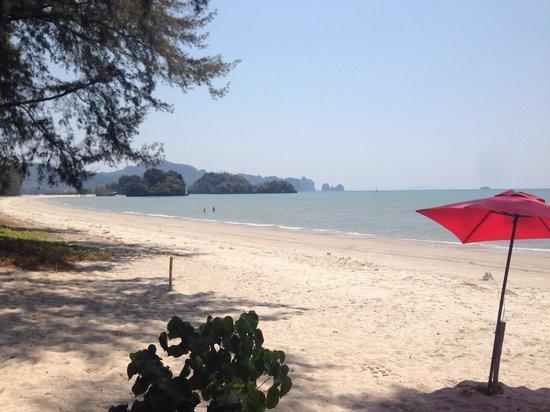 Sandbeach Bungalow: Beach