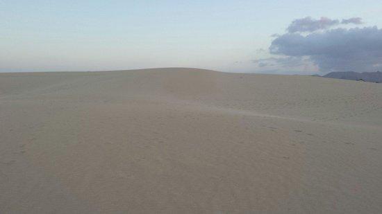 Oasis Village: Dunes de Corralejo