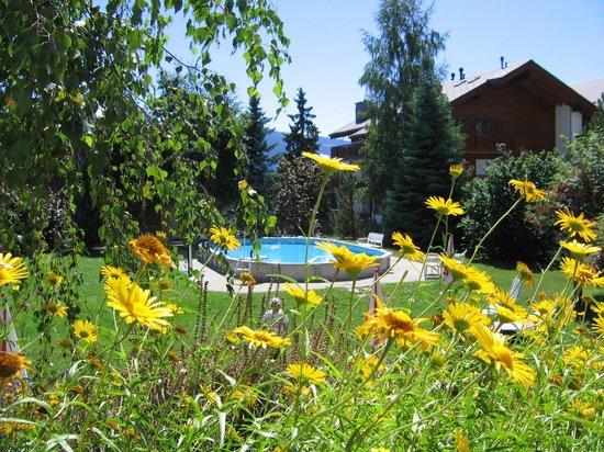 Hotel La Prairie: Vue sur le jardin et la piscine