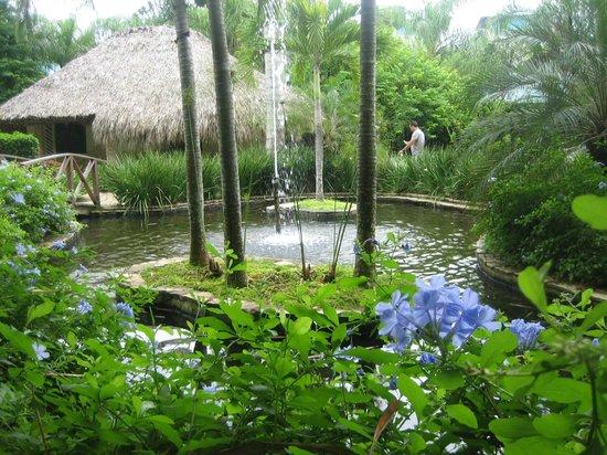 Dreams La Romana Resort & Spa: Le SPA