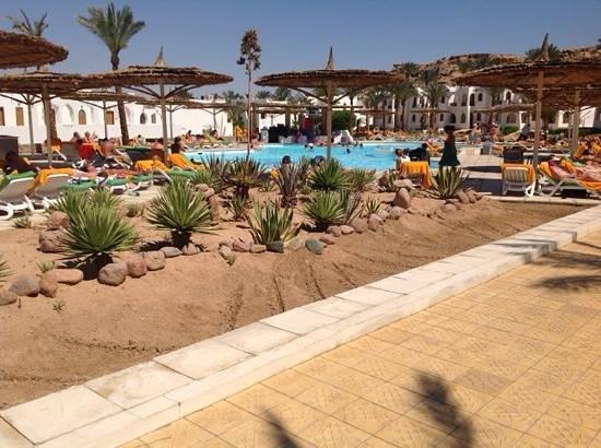 Beach Resort & Casino : Cactus Bar