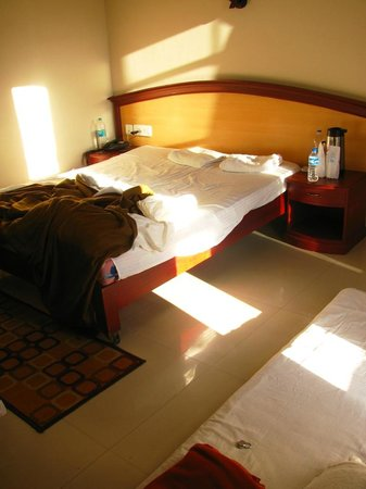 Munnar Inn: Morning sun rays