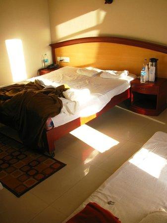 Munnar Inn: Morning sun rays