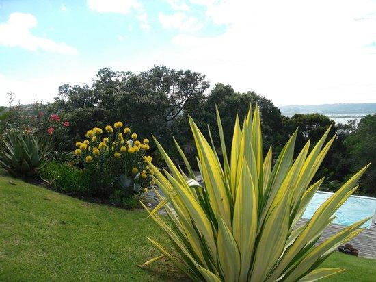Villa Mulligan: Garten mit Pool