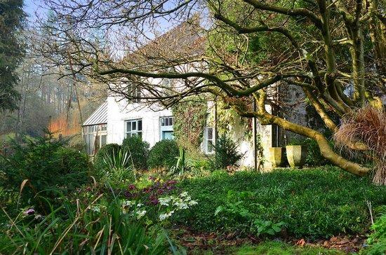 Lower House: House through the garden