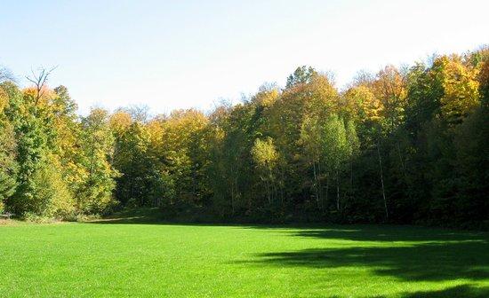 Elvyn Lea Lodge: Event Green