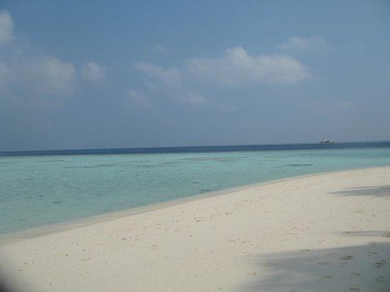 Biyadhoo Island Resort: Spiaggia laguna