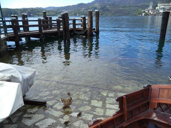 Antico Caffe del Lago: вид на пристань и озеро с утятами