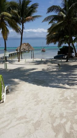 Caye Casa : View from front desk of hotel
