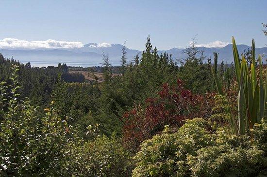 Mapua Chalets: View