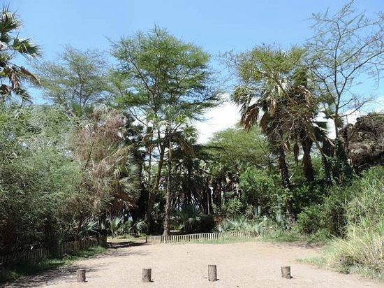 Kisima Ngeda Tented Camp : Parking / Entrance