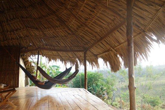 Filo del Tallo Lodge : La terrasse sur la forêt