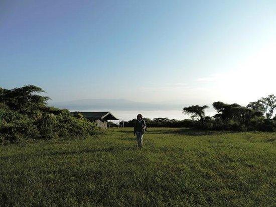 Pakulala Safari Camp : Pakulala View