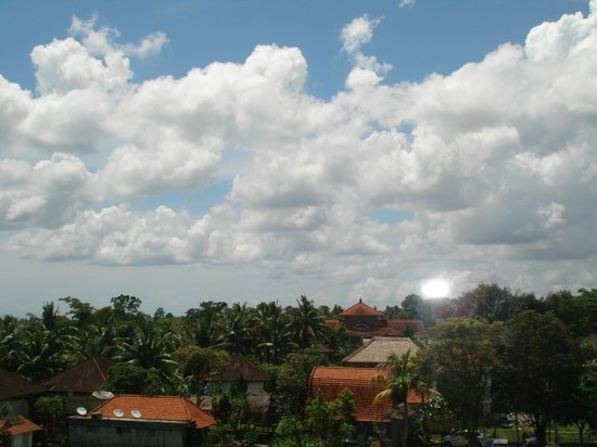Plataran Ubud Hotel & Spa: View from m room