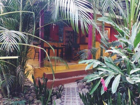 Hotel bungalows SolyLuna los Almendros.: Sol.