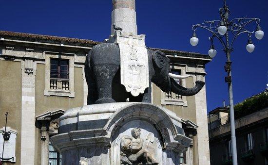 Duomo di Catania: Слон