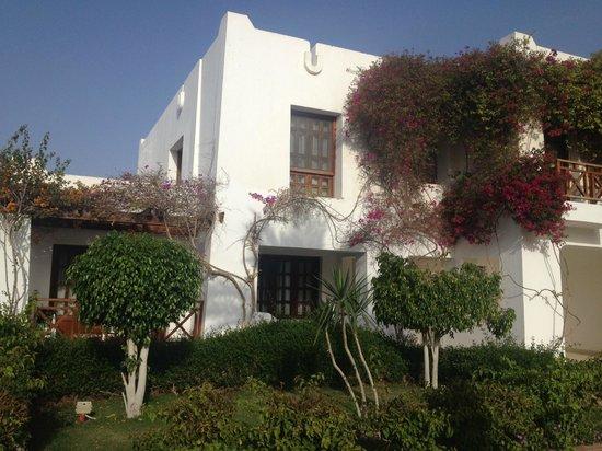 Mexicana Sharm Resort: Территория отеля 2