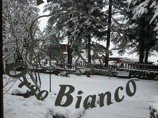 Hotel Orso Bianco: esterno hotel