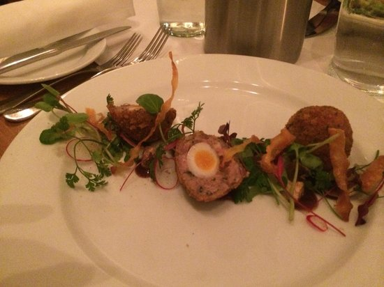 The Fig Tree: Scotch egg starter - excellent!